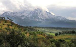 Aprobada la declaración de Parque Nacional de la Sierra de las Nieves
