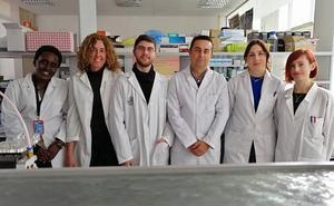 Investigadores de la UJA y la UGR proponen un nuevo modelo de origen tumoral