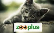 El 'chollo' de Zooplus para ahorrar en alimentación para tus mascotas