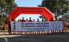 Granada celebra el campeonato andaluz universitario