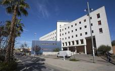 Ocho investigadores de la Universidad de Granada, entre los más citados del mundo