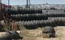 Comienzan a retirar unas 8.000 toneladas de neumáticos en el depósito incontrolado de Jabalquinto
