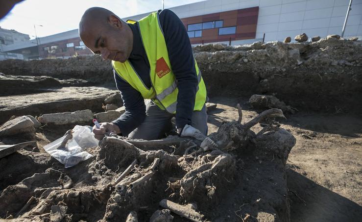 Hallan restos de lo que podría ser un edificio del siglo IV en los Mondragones