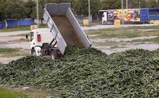 Los agricultores de la Costa abandonan la protesta de los pepinos tras perder más de 400.000 euros en siete días