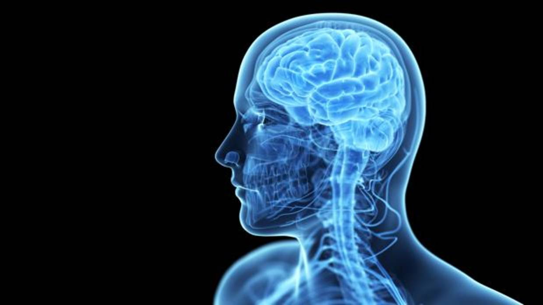 Desarrollan un «marcapasos cerebral» para tratar la epilepsia y el párkinson