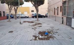 Amalia Román (IU): «La inversión no llega a los barrios de Almería»