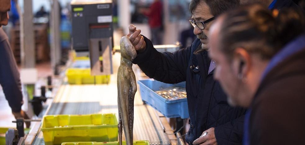 ¿Qué se ha pescado en 2018 en Motril?: el 'milagro' de los panes y el bacalao