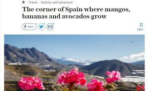 El popular diario británico 'The Telegraph' se enamora de la Costa Tropical granadina