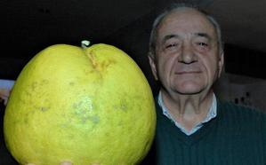 El pomelo gigante del 'Paradise'
