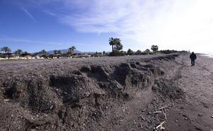 El Gobierno busca ya empresa para realizar el proyecto de la defensa de Playa Granada
