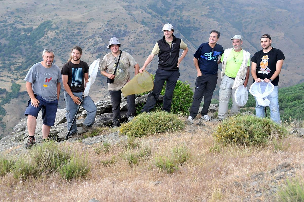 10 años de seguimiento de mariposas diurnas en Sierra Nevada