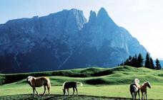 Mueren cinco personas al chocar un helicóptero y una avioneta en los Alpes italianos