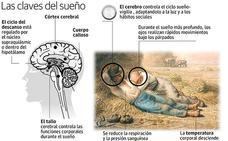 Un estudio pionero de la UGR aborda la apnea del sueño desde un plano psicológico