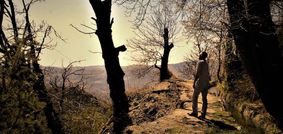 Mecina Bombarón promociona las rutas de las acequias para atraer más turismo de naturaleza en el Parque Protegido de Sierra Nevada