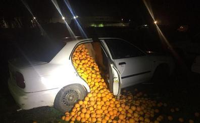 Detienen a cinco personas con 4.000 kilos de naranjas en un coche «para consumo propio»
