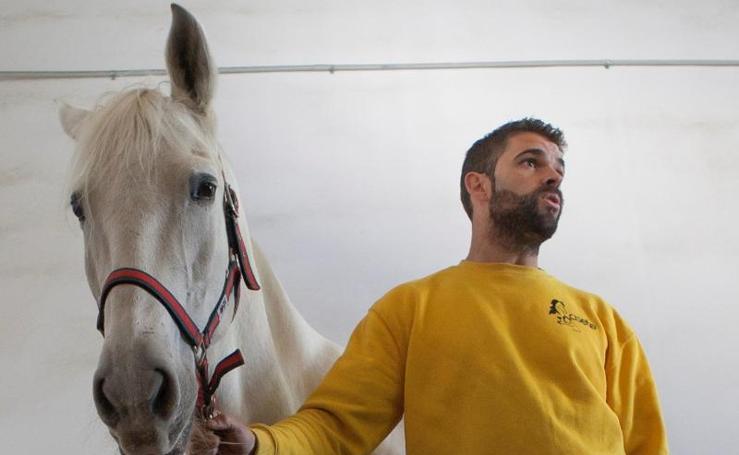 Así es «Unicornio»: el caballo de la Policía que ayuda a los niños autistas tras su jubilación