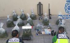 Desmantelan dos plantaciones de marihuana en sendos invernaderos de Armilla y Otura