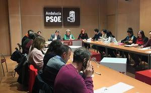 El PSOE de Granada pone en marcha su Comité Electoral de cara a las municipales