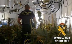 Encuentran una pistola junto a una plantación de marihuana en Pinos Puente
