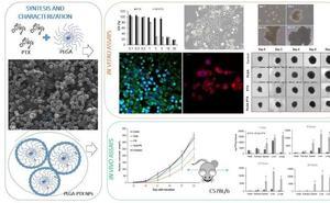 Consiguen sintetizar nuevos nanofármacos con mayor efecto frente al cáncer