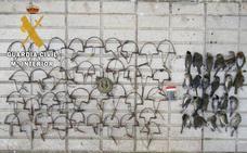 Investigado un vecino de Martos acusado de cazar aves con artes prohibidas