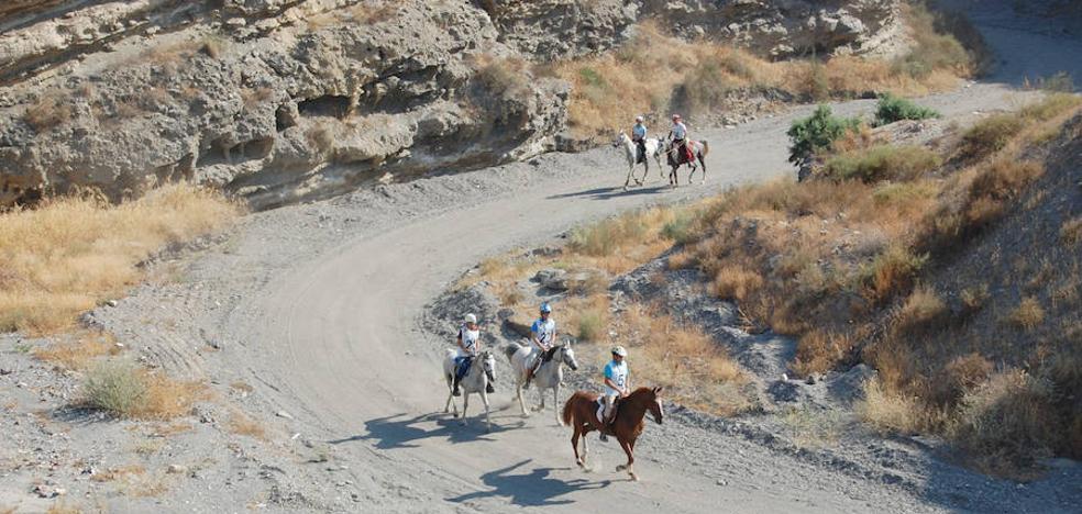 El avance del desierto, bajo la lupa en Almería
