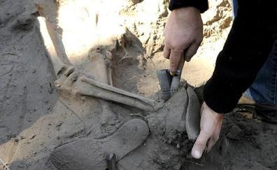El Gobierno estudia trasladar los restos de Franco al cementerio de El Pardo