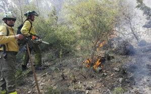 Efectivos del Infoca extinguen el conato de incendio forestal en Jimena