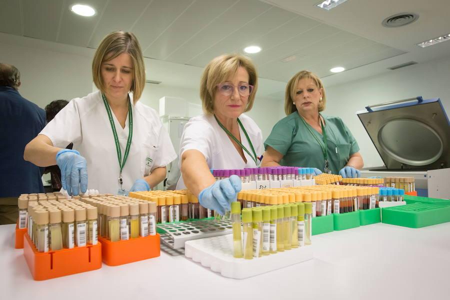 La Unidad Provincial de Anatomía Patológica de Granada recibe una distinción internacional de Philips
