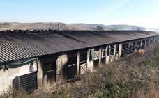 Un hombre muere al incendiarse una granja de pollos en Toledo