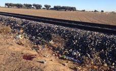 Muere una niña de 14 años arrollada por un tren