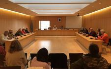 Órgiva aprueba las alegaciones al proyecto de la línea de alta tensión de REE