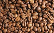 La lucha de un español por recuperar el mejor café del mundo