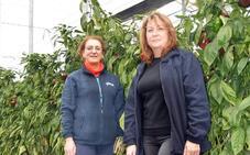 Un legado familiar agrícola con nombres de mujer en Almería