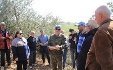 El contingente español impulsa un programa para mejorar la producción olivarera en Líbano