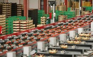 Etiquetas inteligentes en los productos agroalimentarios de calidad almeriense