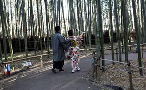 Turistas entre la hierba gigante