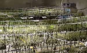 A prisión dos personas tras desmantelarse un punto de venta de drogas en Úbeda