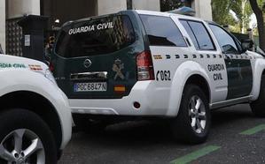 Arrestada una joven en Alcaudete por azuzar a su perro contra una menor a la que llegó a morder