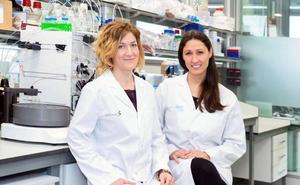 Científicos españoles crean un fármaco que inhibe un gen en la mayoría de cánceres
