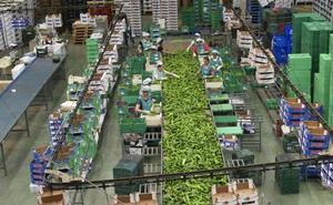 Un enero de récord eleva la venta al exterior un 15,3%