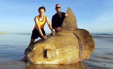 Un enorme pez luna en Australia