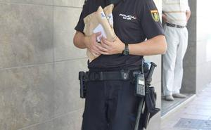 Golpea a varios policías de Jaén a los que había pedido ayuda