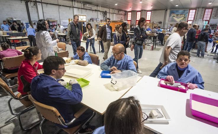 Los socios europeos del proyecto 'Cognición e Inclusión' visitan la asociación Vale