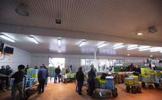 La Guardia Civil se incauta de 181 kilos de pulpo inmaduro supuestamente comprado en Motril