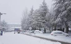 Reabre la estación de Sierra Nevada tras amanecer cerrada por la nieve