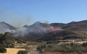 El incendio forestal de Balanegra arrasó 14 hectáreas de matorral cerca de un área de cultivos