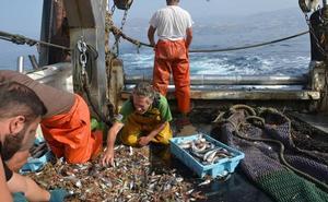 Los pescadores de Motril se unen a un proyecto que buscará soluciones al problema de los descartes