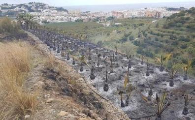 Los bomberos de Almuñécar emplean más de cinco horas para sofocar el incendio en una finca