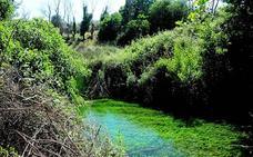 Ruta por el Nacimiento de Riofrío, nuevo Monumento Natural de Andalucía